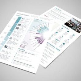 CV designers in Pembrokeshire for Cardiff consultant